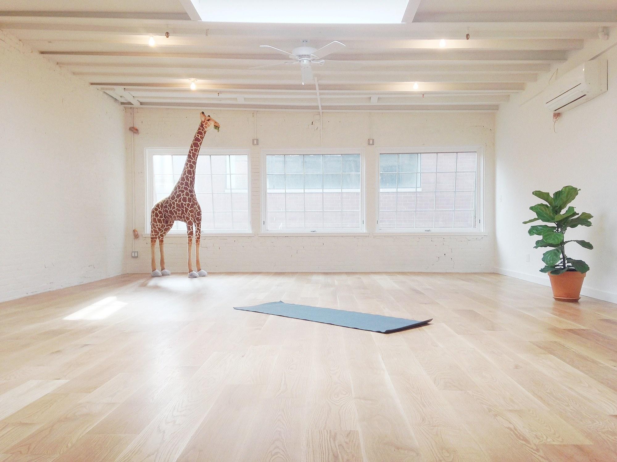 02-krissy-jones-skyting-yoga.jpg