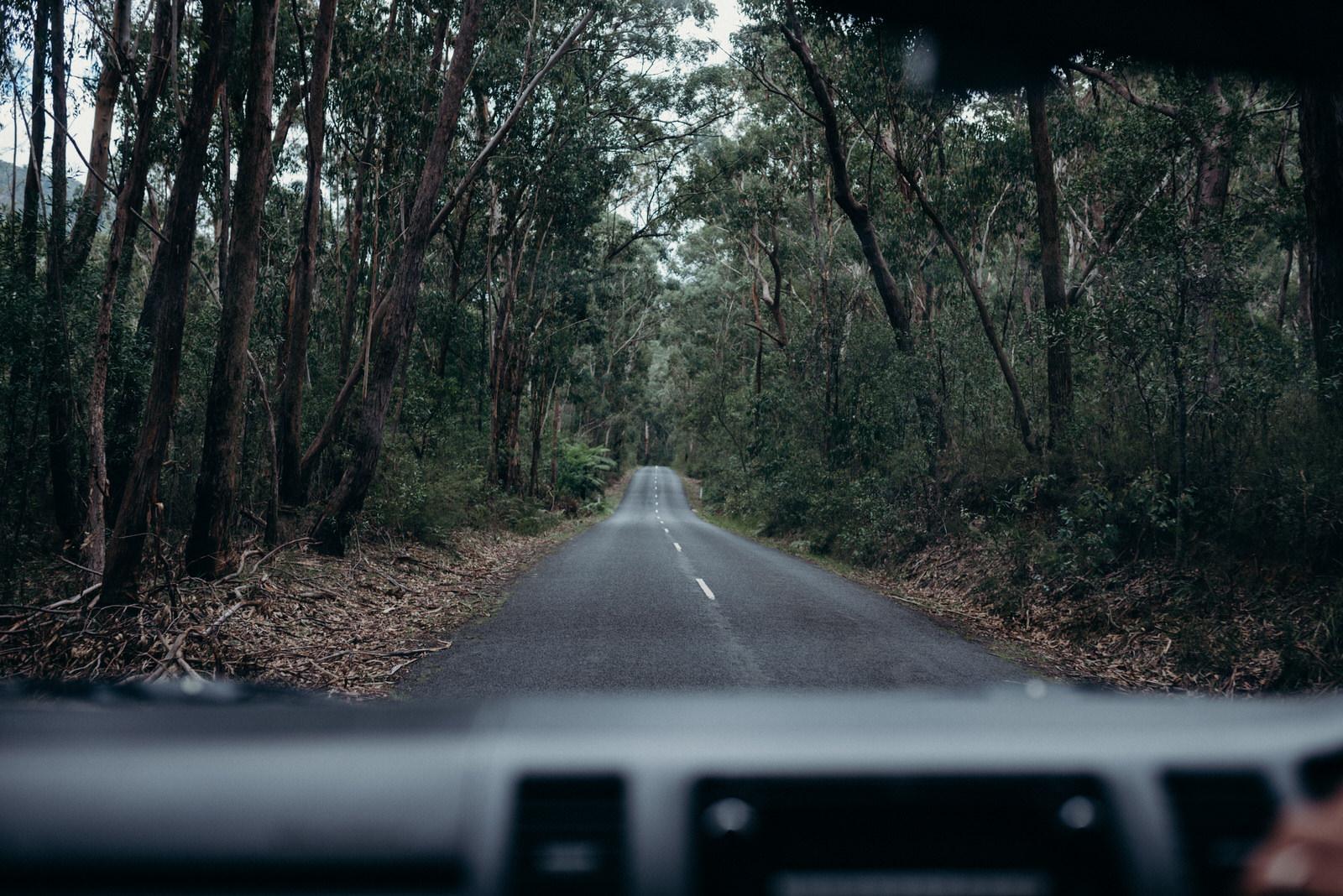 Australia Full Edits-504.jpg