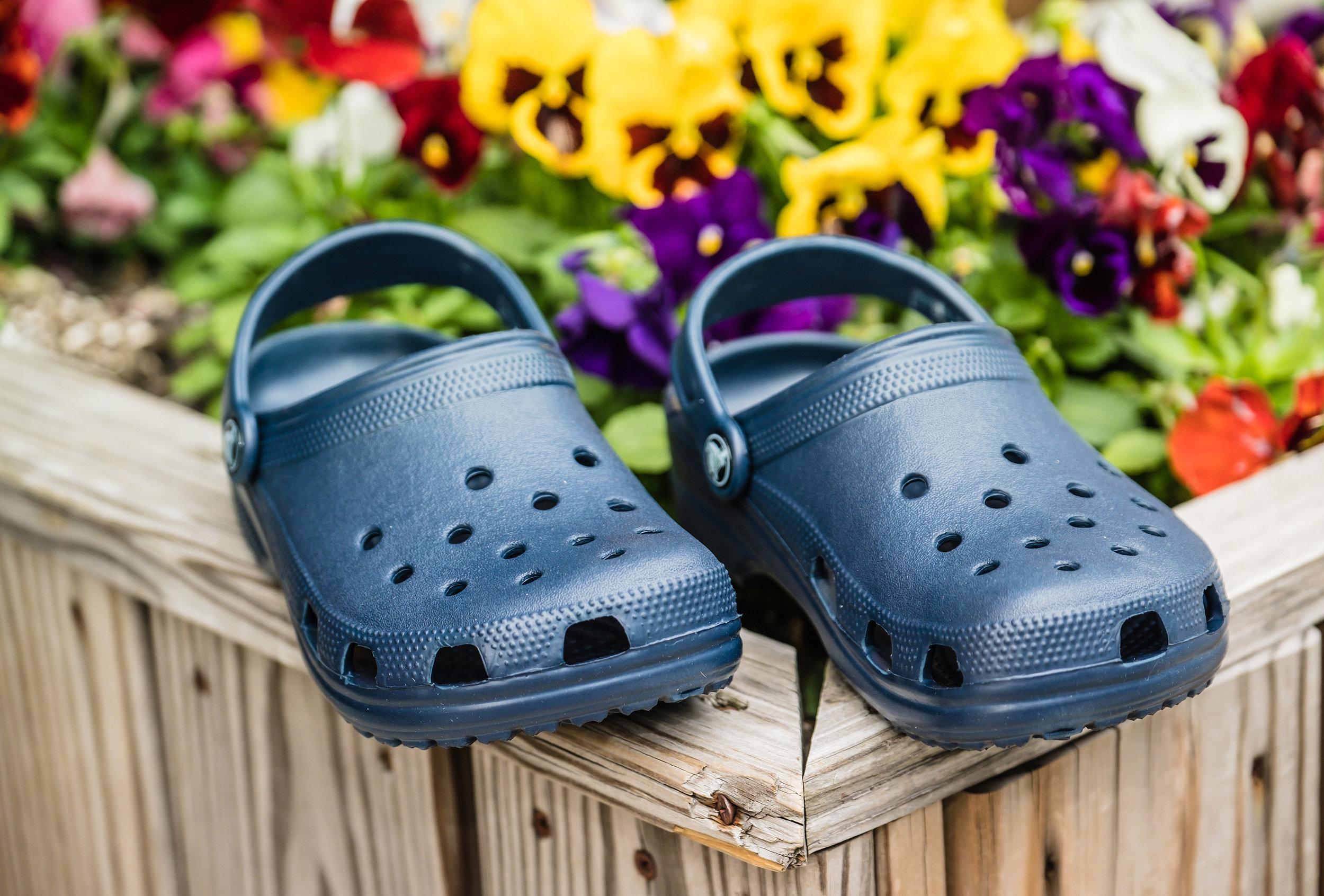croc5.jpg