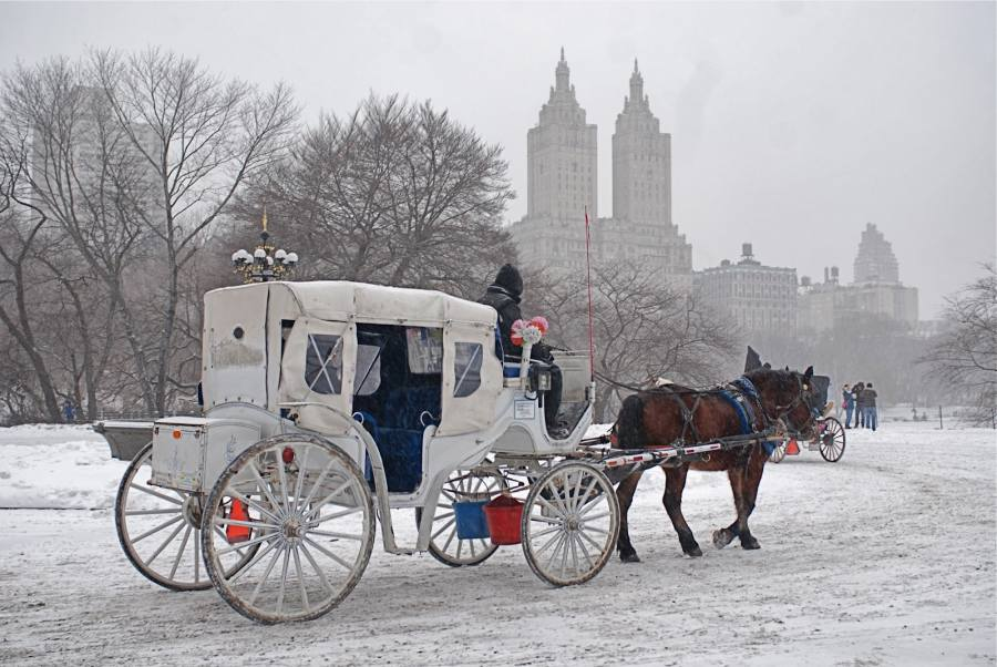 Central-park-horse-carriage-tours-in-winter.jpg