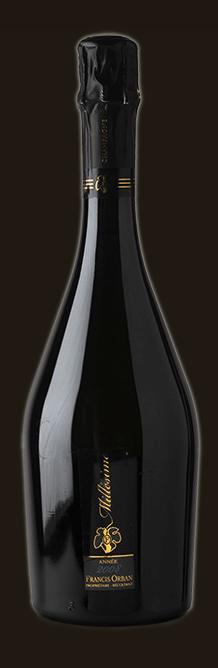 Bottle v3.jpg