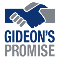 Gideon's Promise   Strategic Planning & Executive Coaching   + Visit Website