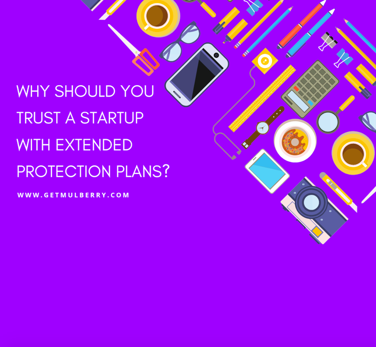 Mulberry - Why Should You Trust a Startup