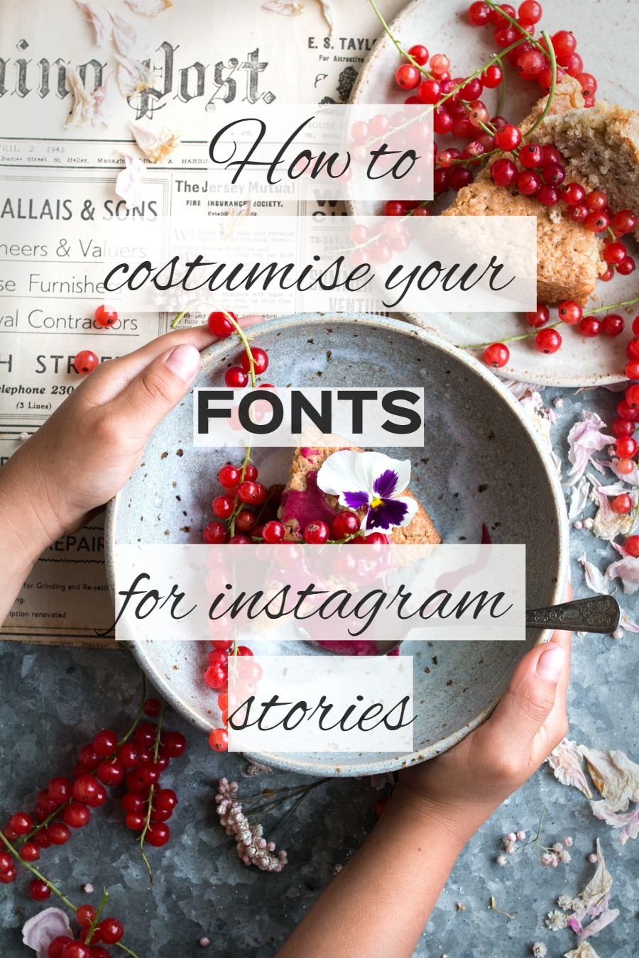 How you can customin your fonts for instagram stories - The Little Plantation