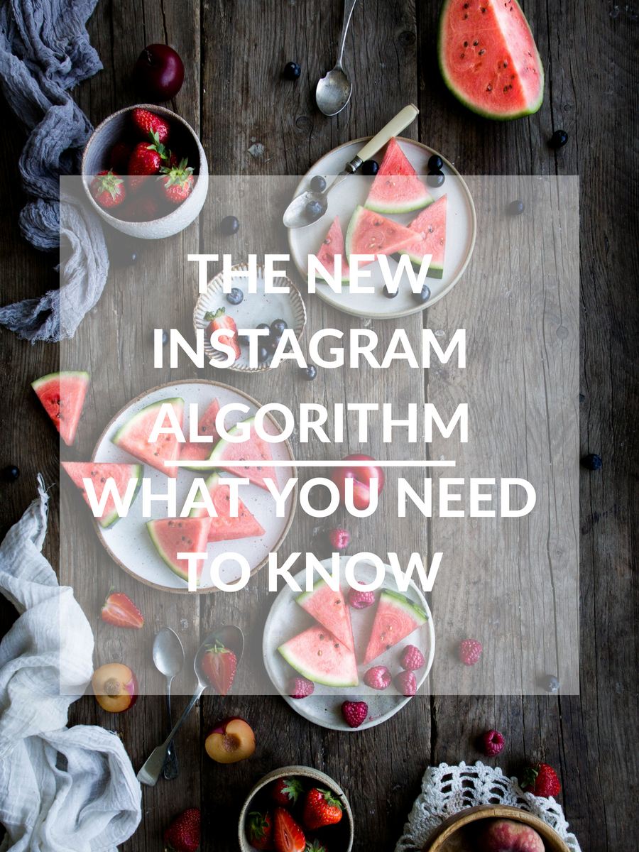 What you need to know about the new instagram algorithm - The Little Plantation