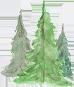 treesforweb.png