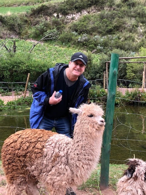 Rabbi Bill with Alpaca.jpg