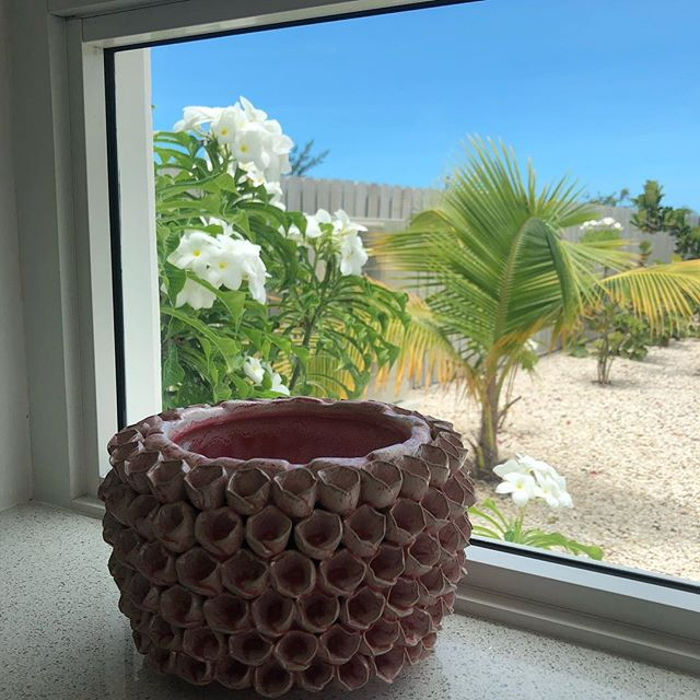 How's the view from your window? 🌺🌴😊 #kitchenbacksplash #dreamvacation #turksandcaicos #beautifulbynature • • • • • • #winteriscoming #getaway #windowview  #turksandcaicosislands #sunandsea #beachescape #beachvacation #tropicalparadise #traveltheworld #travelblogger #coastaldesign #bucketlist #caribbeanwaters #beautifulblue #villarental #familyvacation #familyfriendly #luxurytravel  #islandlife #sailingadventure #kiteboarding #kitesurfing #scubadiving #snorkeling #diving #kayakingadventure
