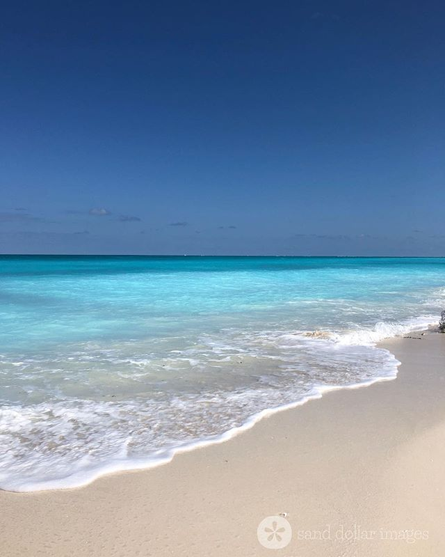 Monday Blues 🌊🙌 Click link in bio to #seewhatisee #endlesssummer #turksandcaicos #beatifulbynature • • • • • • • • #beachwalk #beachwalks #sandytoes #gracebay #gracebaybeach #staysalty #providenciales #leeward #bigskies #bluesea #seascape #dreamydays #bythesea #beachlifeforme #beachlifevibes #kiteboarding #kitesurfing #perfectday #beachbums #beautifulblue #beachlifeforever #villarental #caribbeanlife #liveoutdoors #bestbeach #turksandcaicosislands