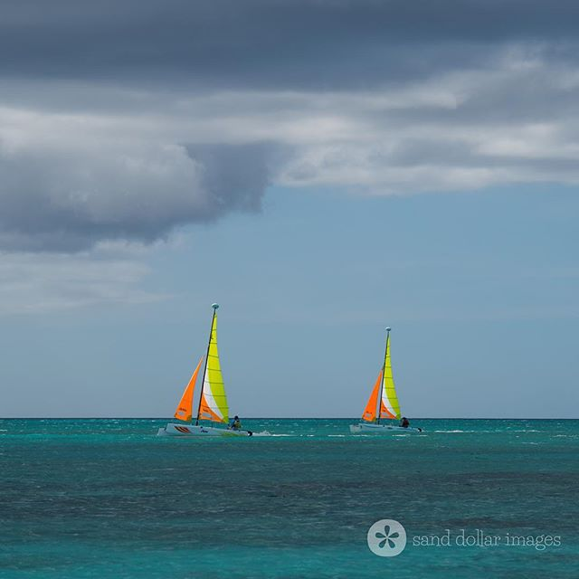 ⛵️💙⛵️www.turnstonehousetci.com 📸 @sanddollarimages #sailaway #watercay #turksandcaicos #britishwestindies * * * * * * * #staysalty #beautifulbynature #coastalliving #bigskies #bluesea #sailinglife #kitesurfing #vacationinparadise #kitesurfersparadise #beachlifeforme #bythesea #sailboatlife #beachlifevibes #sailingadventure #familyfriendly #familytravel #villarental #perfectday #beachlifeforever #sailinglife #caribbeanlife #beachbums #familyholidays #turksandcaicosislands #instagood