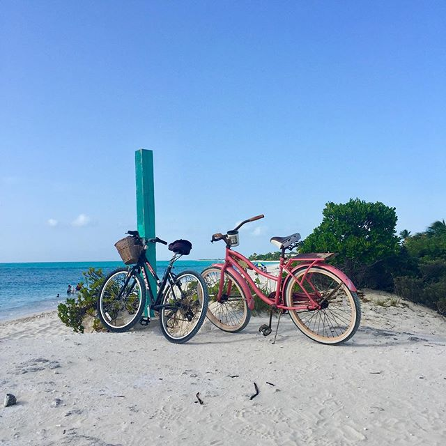 🚲🚲😊 #beachdays @turnstonehousetci #endlesssummer #turksandcaicos #beautifulbynature 📸 @sanddollarimages • • • • • • • • #bikerides #beachwalks #sandytoes #gracebay #gracebaybeach #staysalty #providenciales #leeward #bigskies #bluesea #seascape #dreamydays #bythesea #beachlifeforme #beachlifevibes #kiteboarding #kitesurfing #beachbums #beautifulblue #beachlifeforever #villarental #caribbeanlife #liveoutdoors #bestbeach #turksandcaicosislands