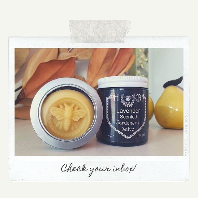 Surpriiiiiise! The September Session invite email just went out and we're so excited to be partnering with @hildegardandblaise again to make solid lotion bars and moisturizing salve! 💕💕💕 There are two date options: Sept 11 and Sept 18. Which one will we see you at, friends? Link in profile, as always. 😉
