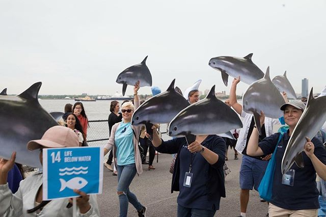 Happy World Oceans Day!  We have to say, one of the most inspiring parts of the World Ocean Festival was all the youth that came out to share their passion to #saveourocean. Check out these photos of the youth march and rally!  @seayouthriseup @heirstoouroceans @soalliance NYC Junior Ambassadors and more!