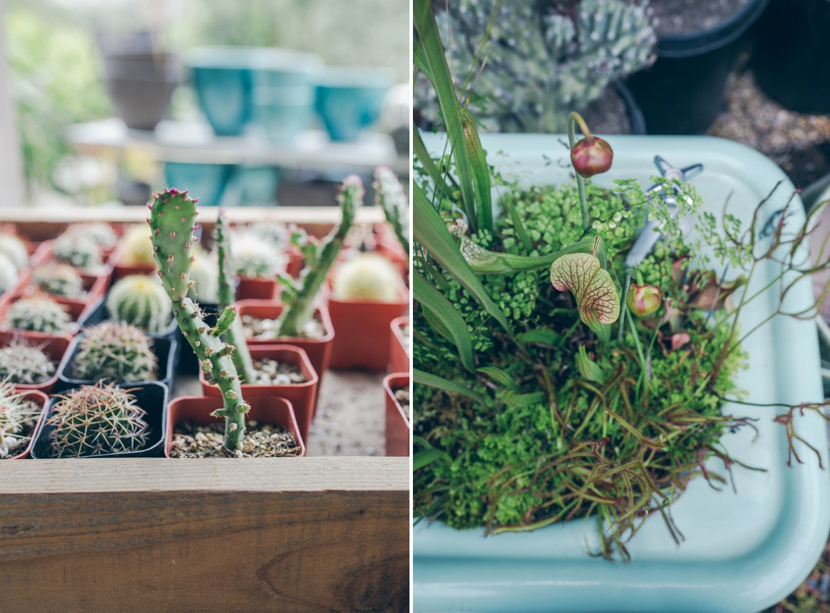 Flora-Grubb-Wedding_0004.jpg