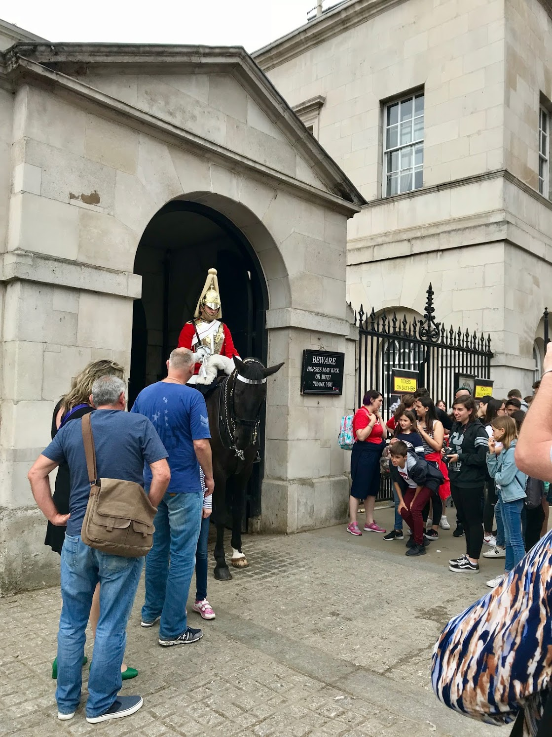 london guard on horse.jpg