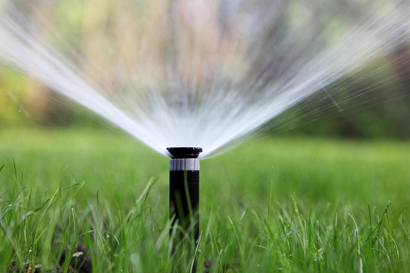 sprinkler-system-irrigation-copy.jpg