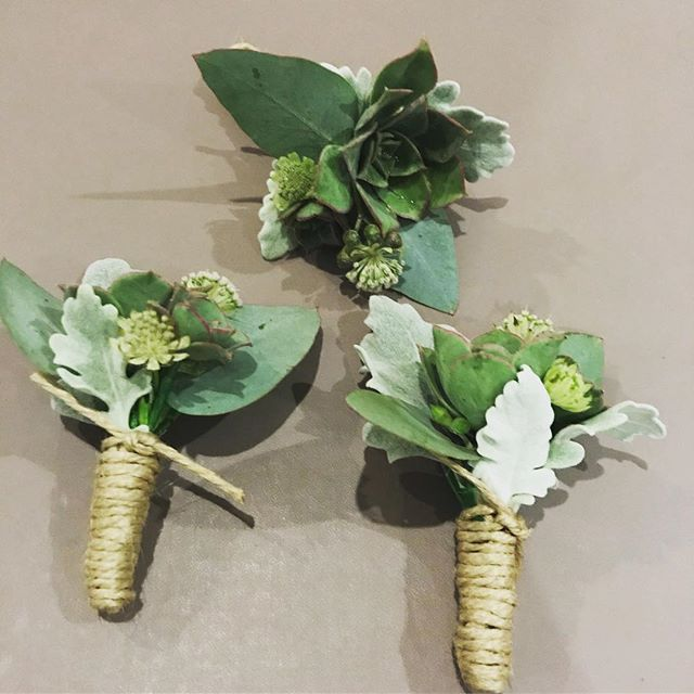 S's beautiful succulent and greenery buttonholes #succulents #buttonholes #succulentsofinstagram #melbourneweddingflorist #toembellish #rusticweddingflowers #weddingflowers