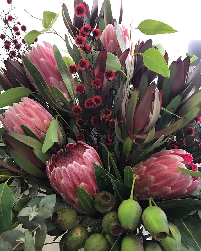 S' ceremony barrel arrangements. Loved being able to use the big gumnuts and beautiful proteas #weddingflowers #stirlingia #nativeflowers #toembellish #nativeweddingflowers #proteas #ceremonyarrangements #melbourneweddingflorist