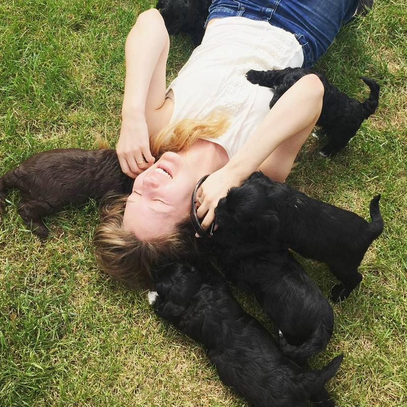 Claire_and_Nate_puppies_summer_2015.jpg
