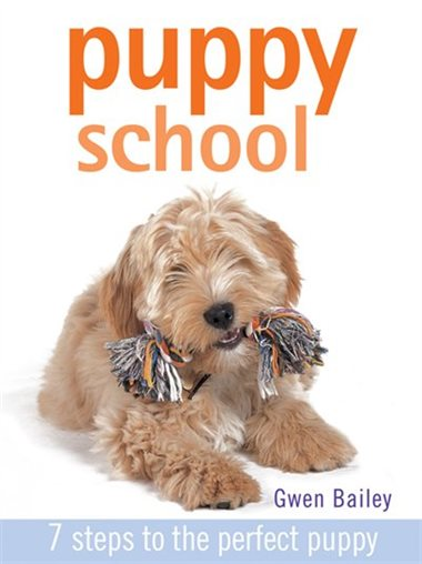 Puppy School by Gwen Bailey.jpg