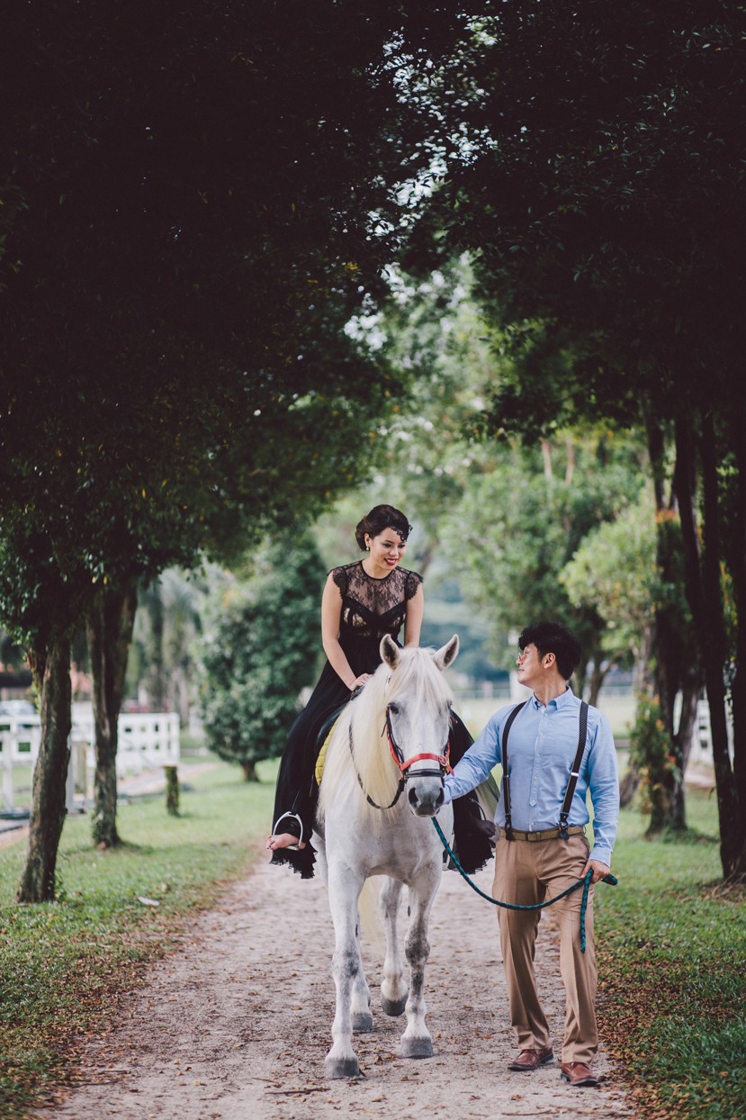 Horse Equestrian Edition - Prewedding