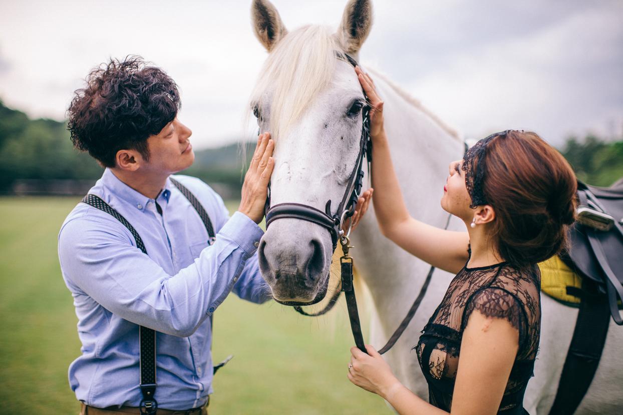 Horse Equestrian Edition - Prewedding