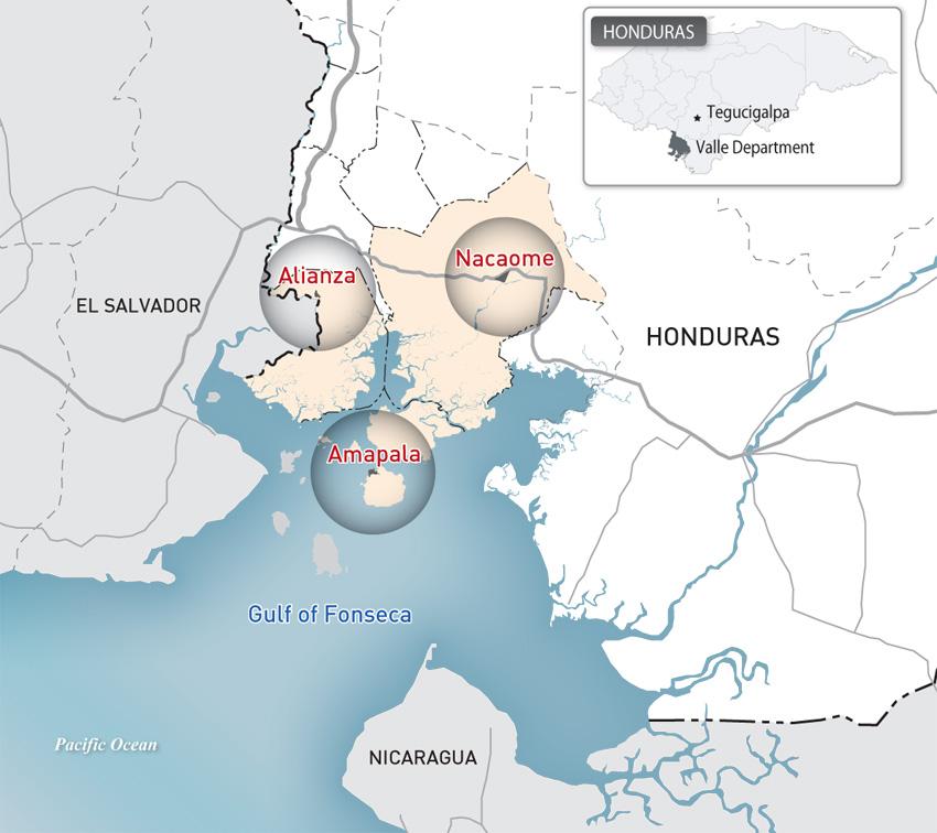 온두라스 특별개발지구 타당성 조사 및 마스터플랜, 2013년