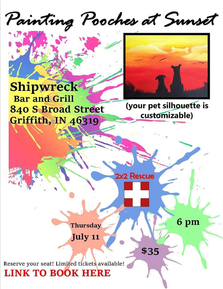 Jult 11th, 2019 - 16x20 Canvas Paint Night to Help Support the 2x2 RescueShipwreck Bar & Grill- Griffith, IN.
