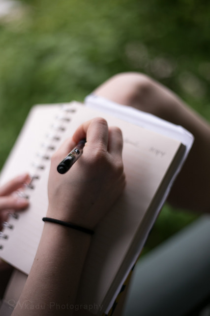 write journal daily