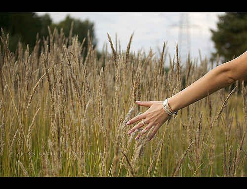 touch nature physical sensation