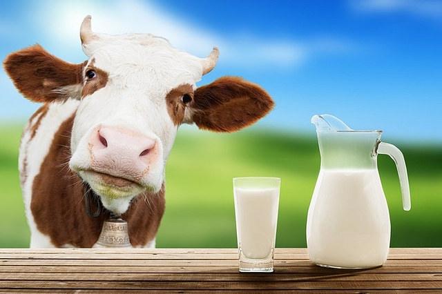 Dairy - raw milk.jpg