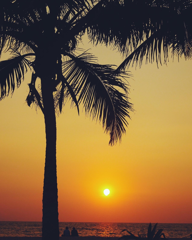 Marari Beach, Alleppey, Kerala. 2017.