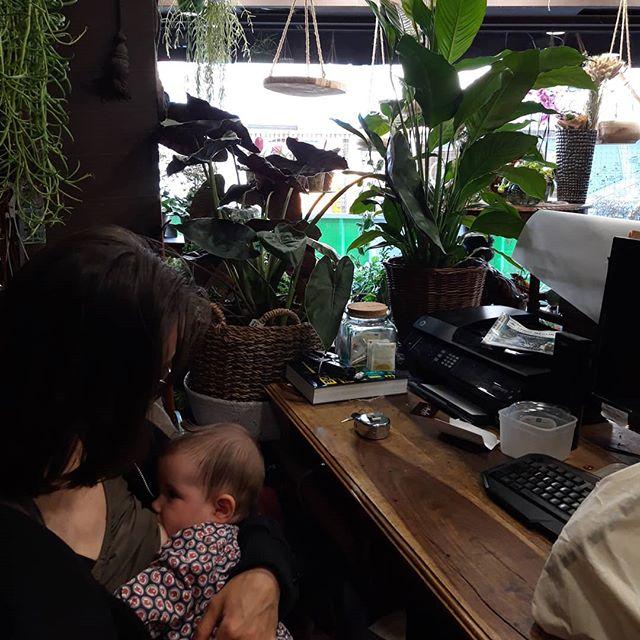 Le métier de fleuriste, le métier de maman Plutôt que de choisir on fait les deux.