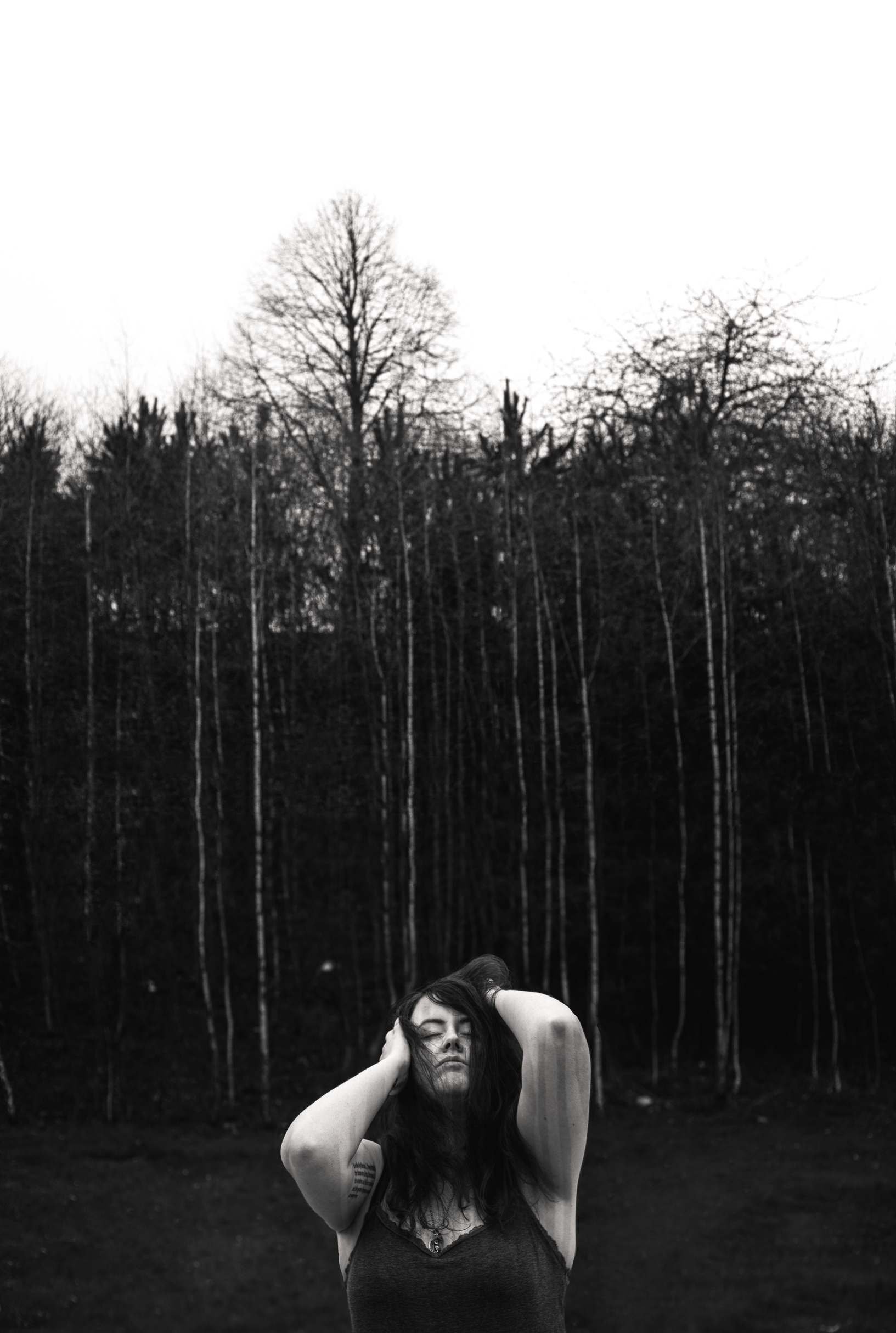 I'll-ask-the-birches-bw-web.jpg