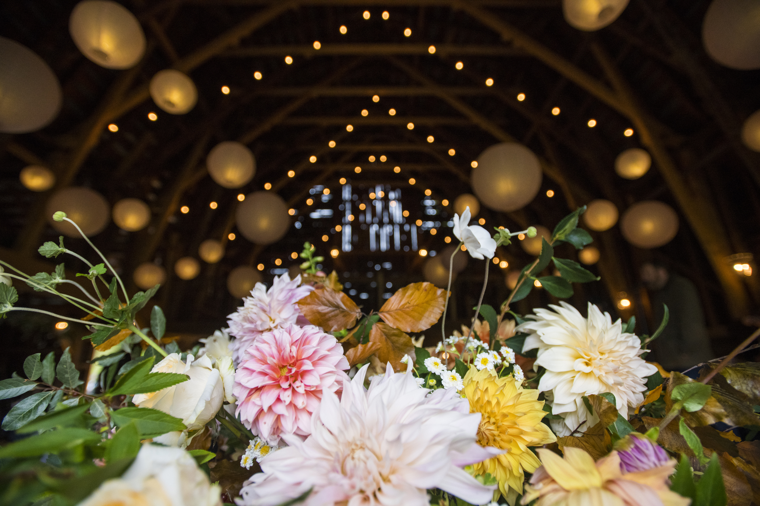 20180922_Brightsmith_CarolNick_Wedding_04695.jpg