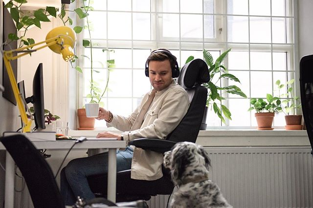 @gedeone_superstar giving @jimmyralsmark great advice on an important topic. What would we do without our so helpful coworkers? 😊🐾☕️💛 #officedog #coworker #boxspacemalmo 📷 @francesca_cerri