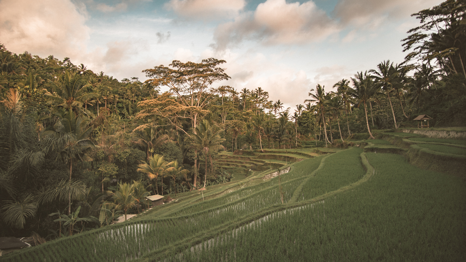 Bali:what to expectand where to stay -