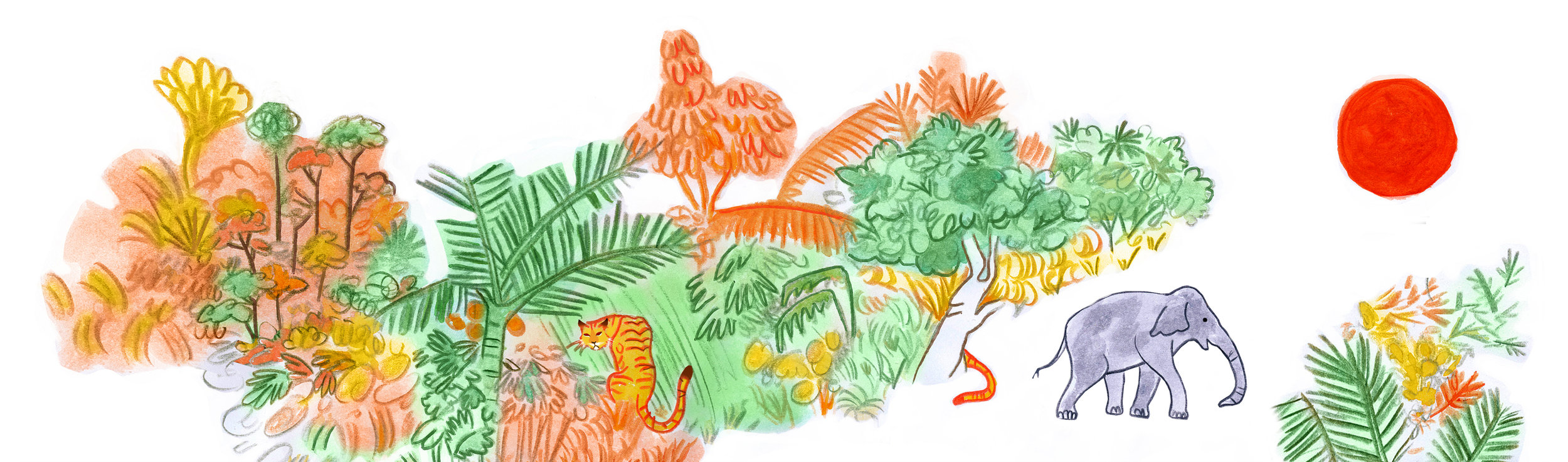 jungle wide format kopi.jpg