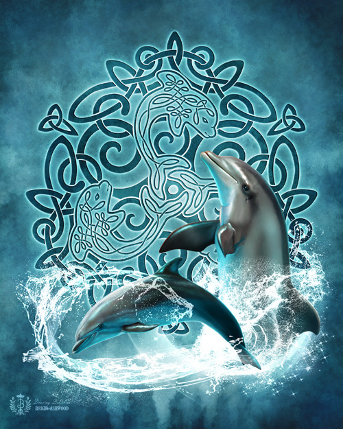 Celtic Dolphins