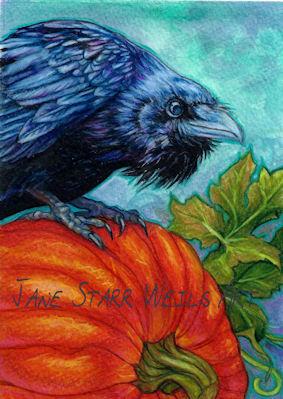 Raven and Pumpkin