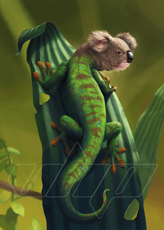 Geckoala