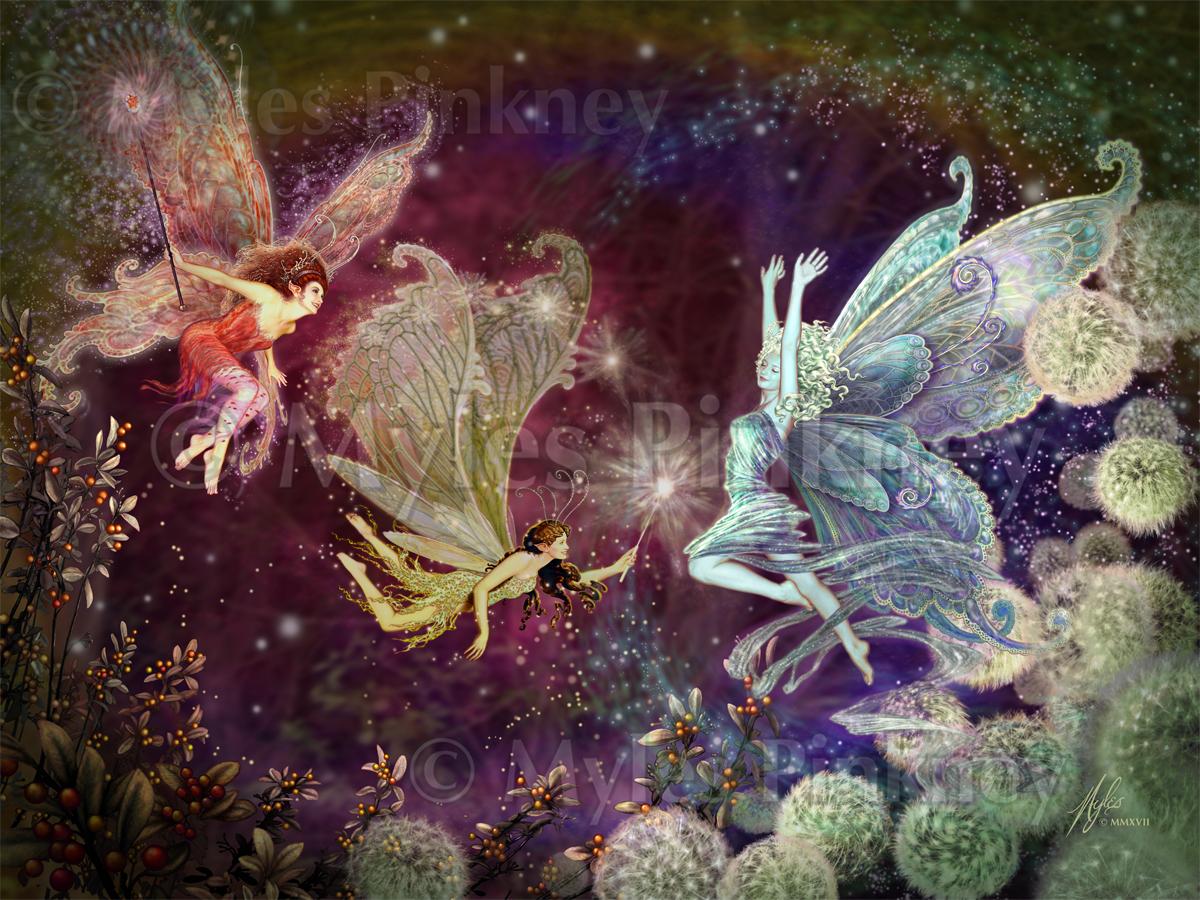 Midnight Fairies