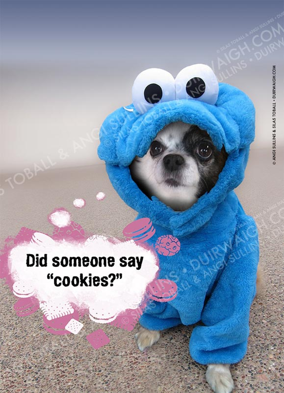 Did someone say cookies?