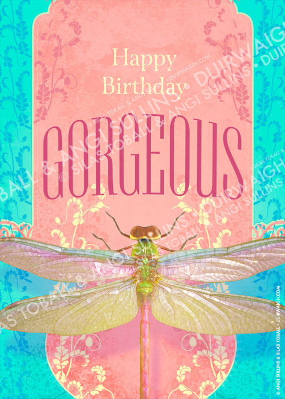 HB Gorgeous Dragonfly