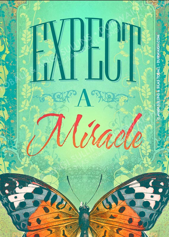 Expect a Miracle 1