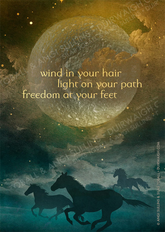 Wind in your hair 1