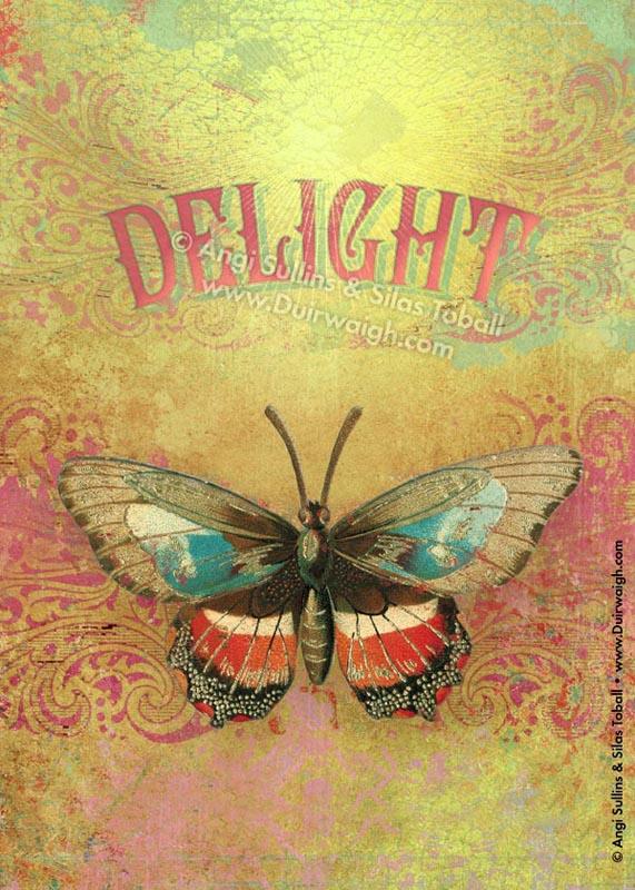delight_w.jpg