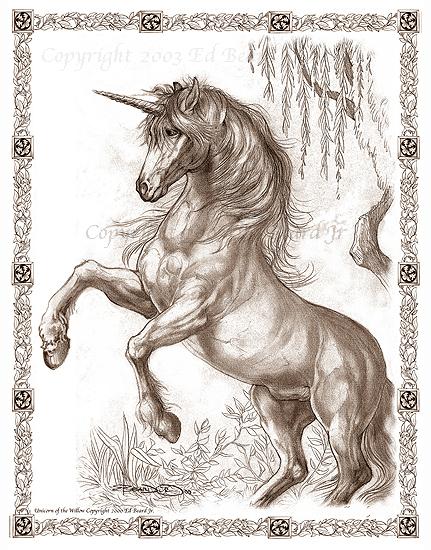 Unicorn Willow