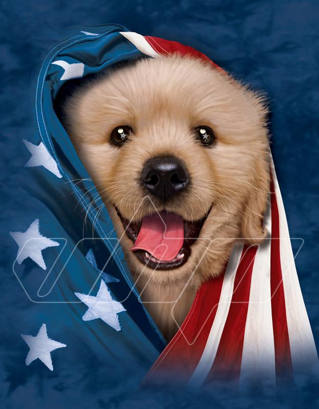 Patriotic Golden Lab Puppy