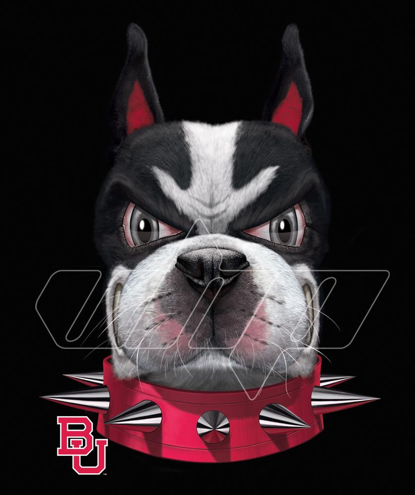 BU Terriers Head.jpg